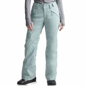 The North Face insulated hyvent snow pants medium